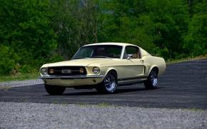 Обои Fastback, 1967, форд, мустанг, Mustang, Ford