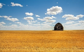 Картинка поле, лето, облака, сарай, 152