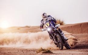 Картинка Мотоцикл, Гонщик, Песок, Экипировка, Скорость, День, Занос, Rally, Спорт, Dakar, Мото