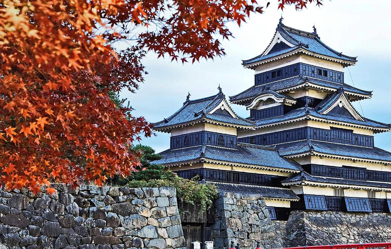 Фото обои осень, листья, Япония, пагода