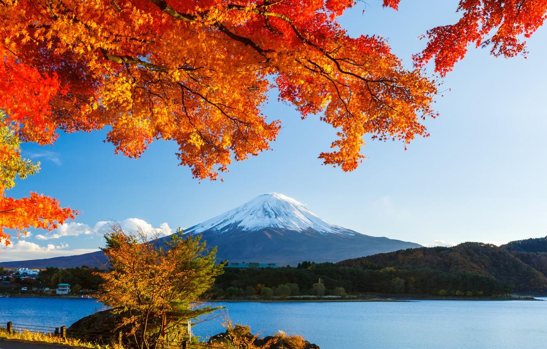 Фото обои осень, лес, небо, листья, снег, деревья, озеро, япония, гора, фудзияма