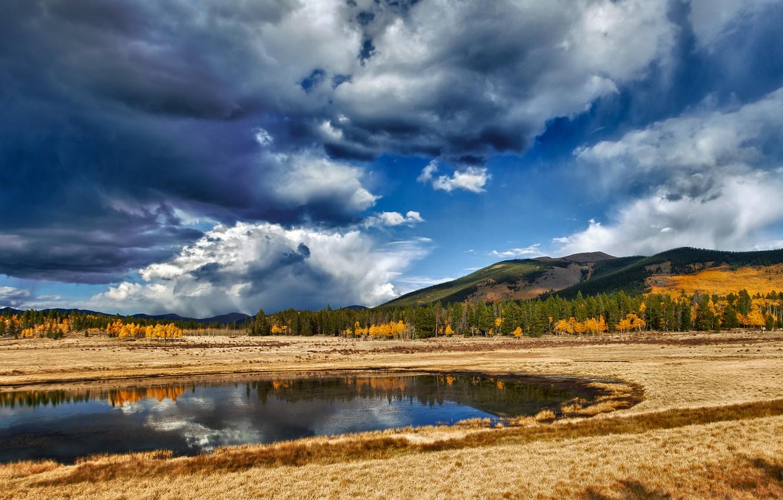 Фото обои небо, трава, вода, облака, деревья, пейзаж, природа, озеро, отражение, grass, sky, trees, landscape, nature, water, …