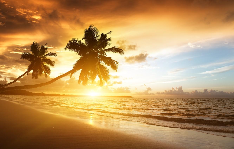Фото обои пляж, небо, облака, пейзаж, природа, пальмы, океан, берег, beach, восход солнца, sky, sea, landscape, nature, …