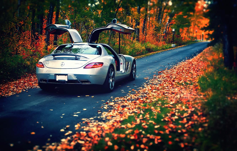 Обои осень, листья, Mercedes-Benz, AMG, SLS, rear, silvery ...