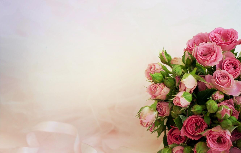Фото обои фон, розы, букет, розовые
