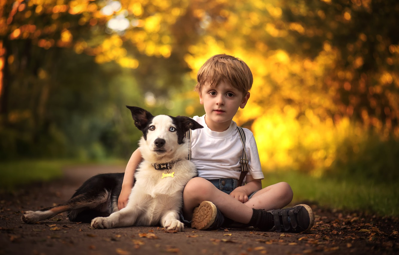 Картинка мальчик и собака