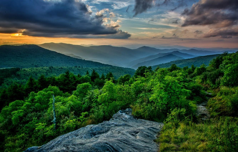 Фото обои лес, облака, горы, красиво