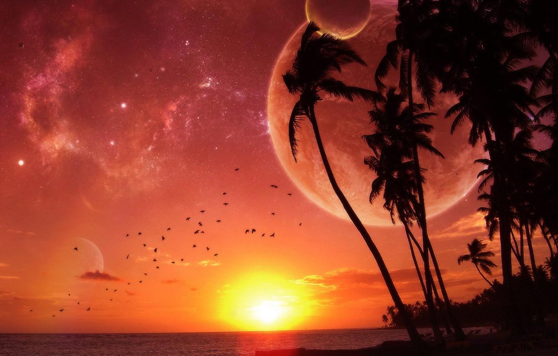 Фото обои пальмы, планета, Закат