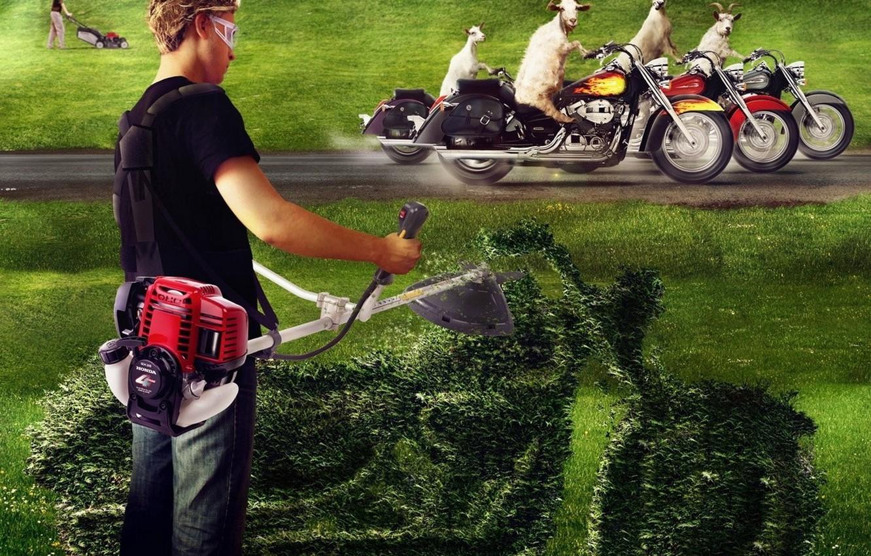 картинки про газонокосильщика проверка