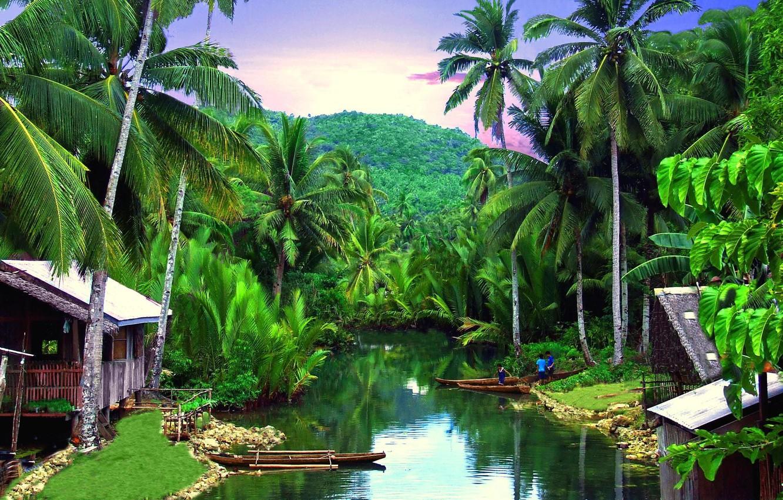 Фото обои тропики, река, пальмы, деревня, Philippines, Siargo
