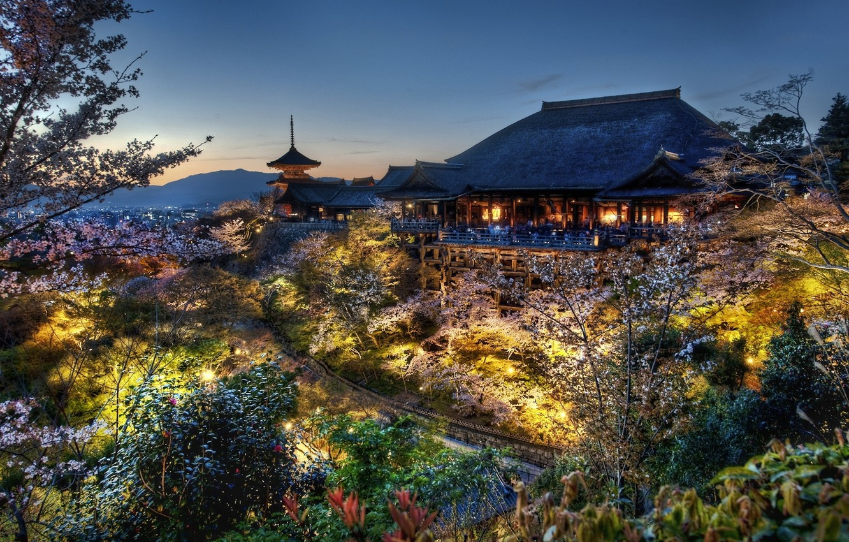 Фото обои лес, дом, япония, вечер, сакура, киото, дом самураев