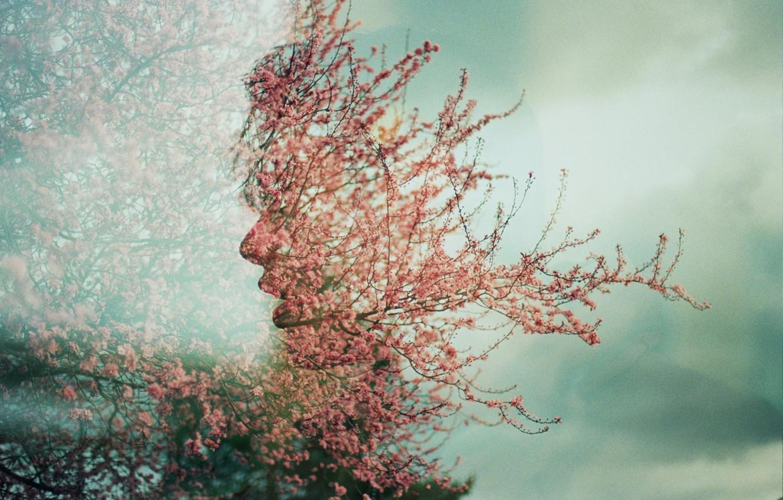 Фото обои лицо, дерево, весна, цветки, Úna, двойная экспозиция, double exposure