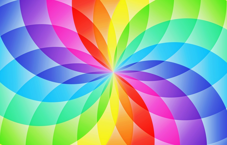 Фото обои цветок, абстракция, узор, круг, радуга, лепестки, сектор