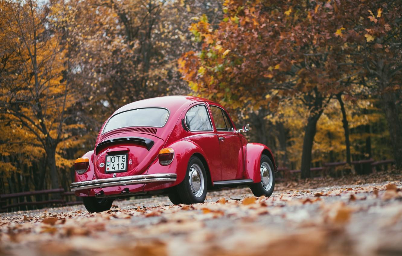 Фото обои машина, осень, город