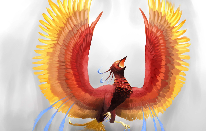 Обои крылья, феникс. Животные foto 19