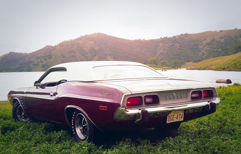 Фото обои car, Muscle, Dodge, Challenger