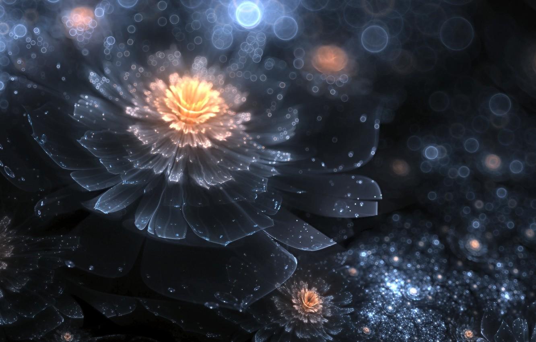 красивые картинки космос цветы рассветом жизни про