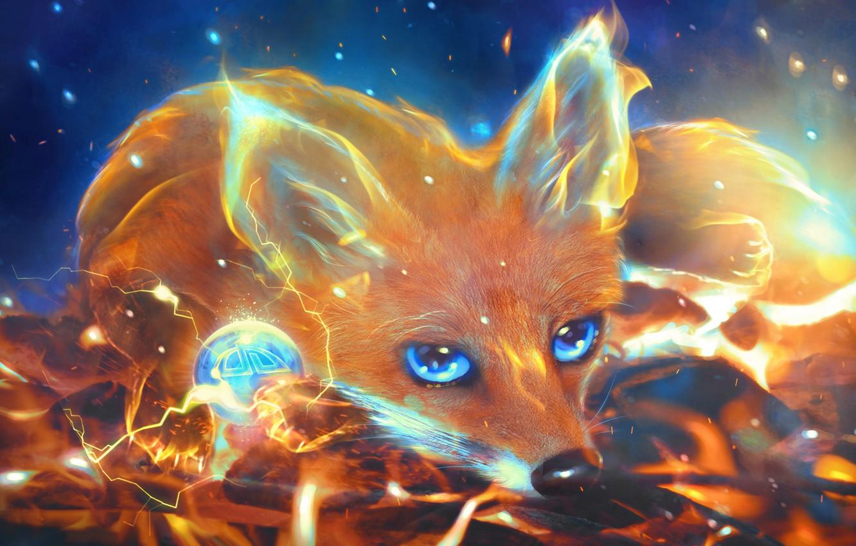 Обои Fox. Лисы foto 8