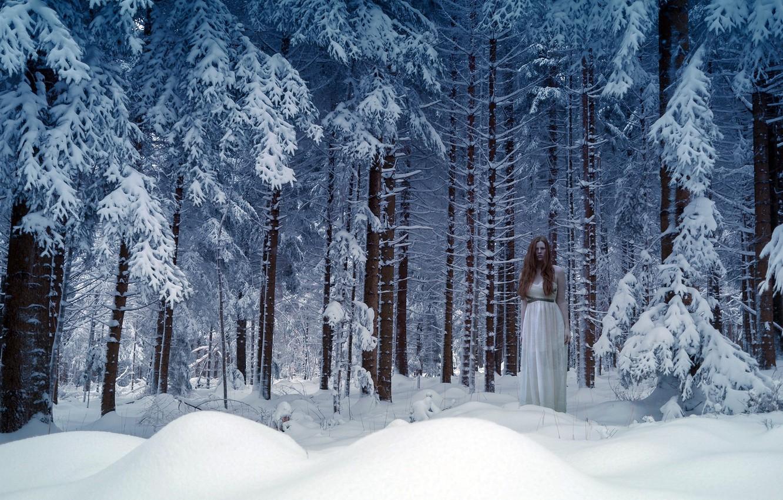 рыба обитает лес зимой и сказка фэнтези фото окончил