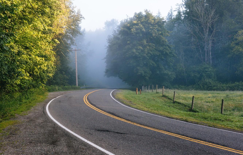 картинки повороты лесных дорог путешествуют одиночку