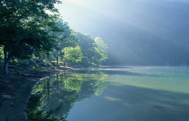 Фото обои вода, солнце, свет, деревья, пейзаж, природа, туман, озеро, берег, light, trees, landscape, nature, water, lake, …