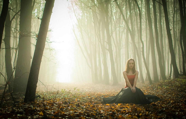 Фото обои осень, лес, девушка, туман
