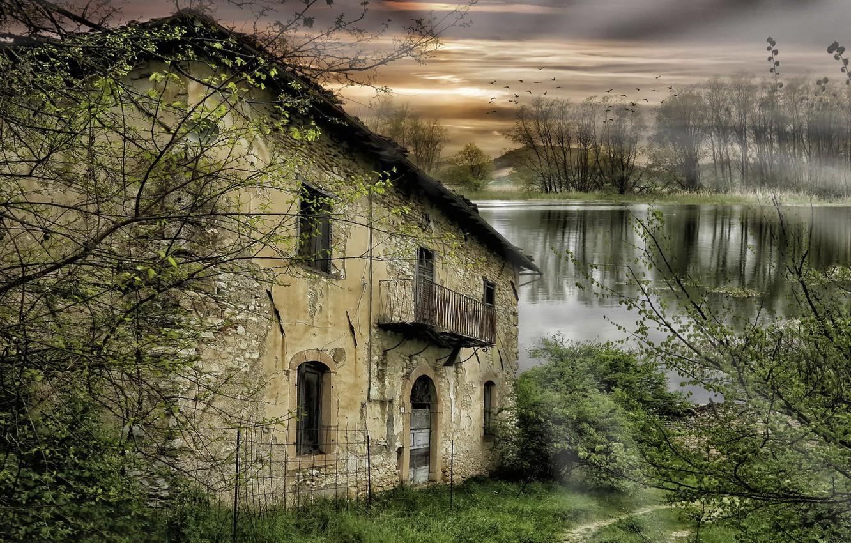 Фото обои деревья, река, заброшенный дом