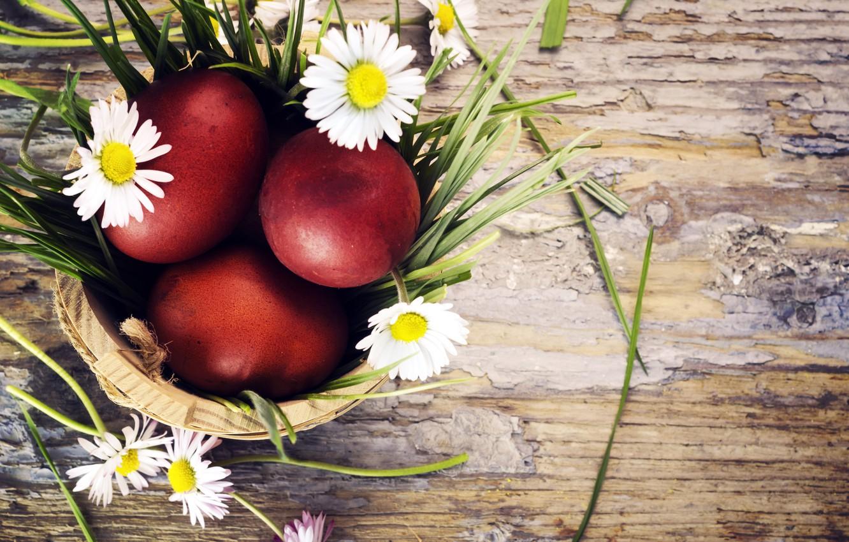 Фото обои трава, цветы, праздник, доски, ромашки, яйца, Пасха, Easter, крашенки