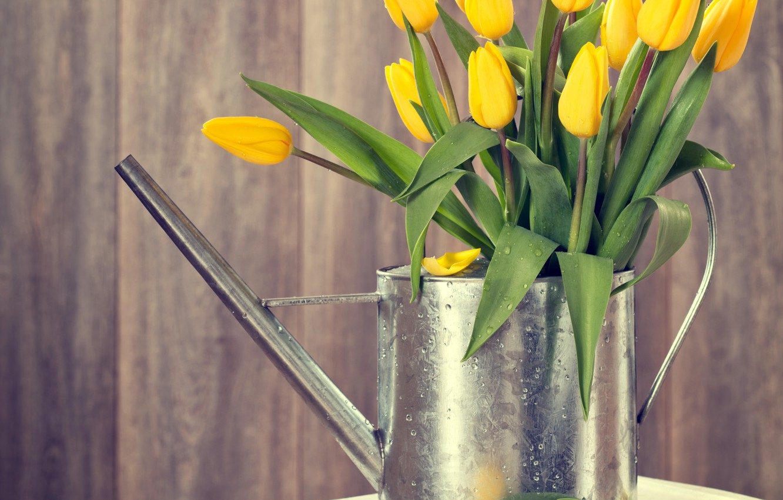 Фото обои дерево, весна, желтые, тюльпаны, лейка, wood, flowers, tulips