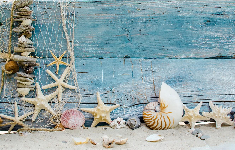 Фото обои песок, пляж, звезды, ракушки, beach, wood, sand, marine, seashells, starfishes