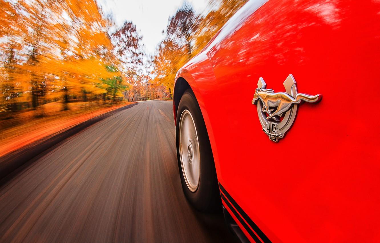 Фото обои дорога, фон, Mustang