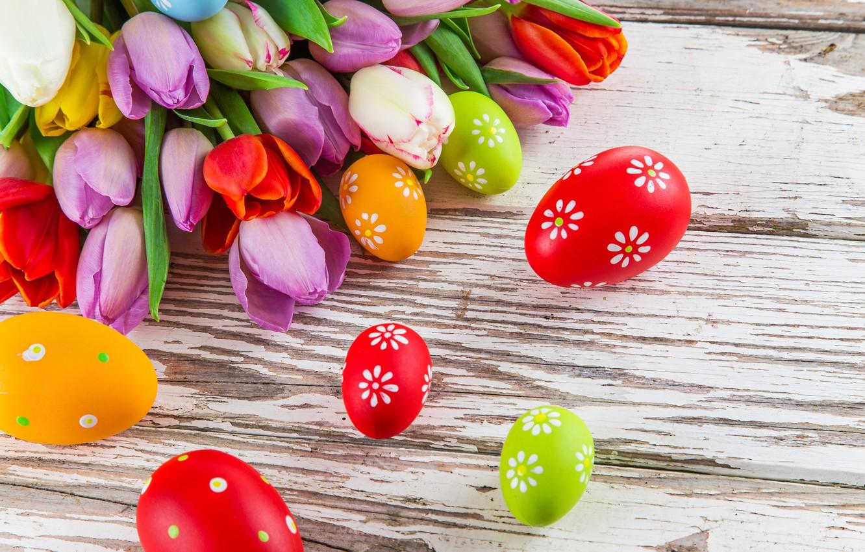 Фото обои цветы, яйца, colorful, Пасха, тюльпаны, tulips, spring, Easter, eggs