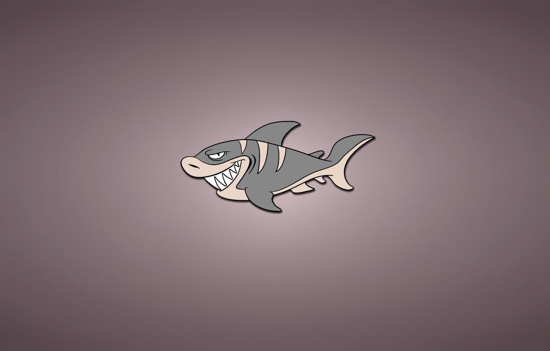 Фото обои минимализм, рыба, акула, светлый фон, shark, fish