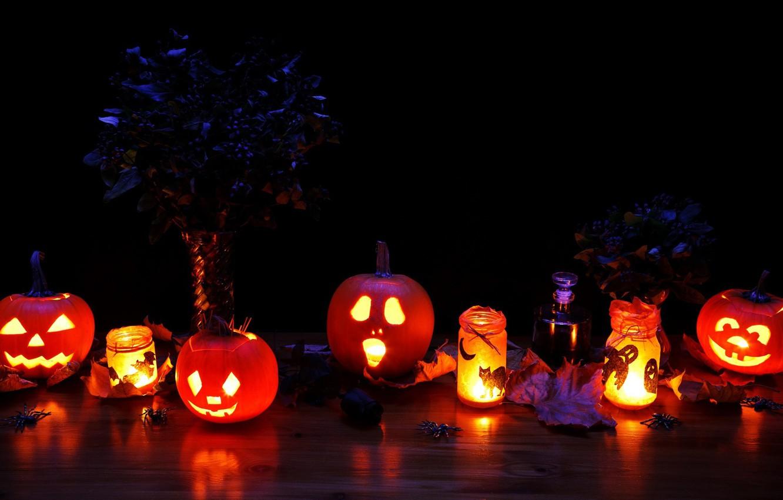Фото обои кот, листья, свет, кошки, ночь, lights, праздник, магия, паук, свечи, духи, spider, фонари, тыквы, Halloween, …
