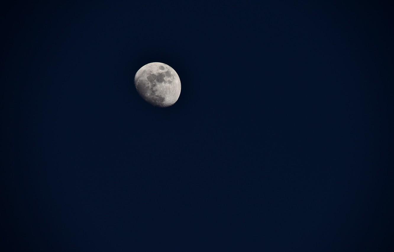 Фото обои небо, ночь, луна