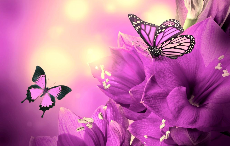Обои Коллаж, крылья, цветы. Разное foto 14