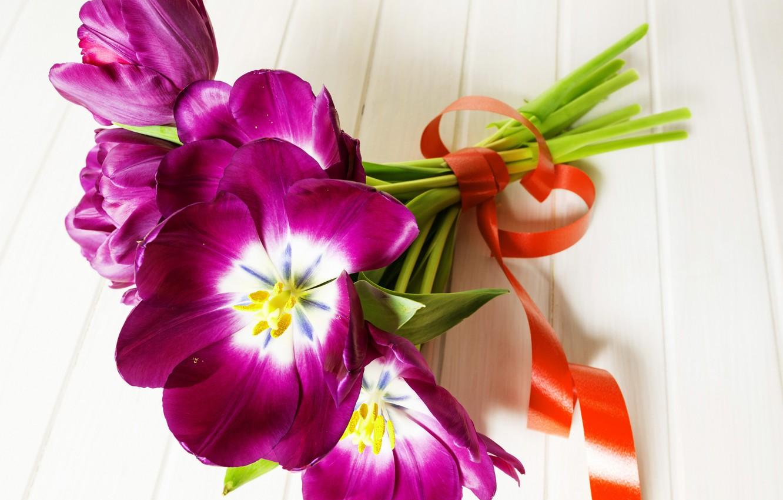 Фото обои цветы, букет, лента, тюльпаны, tulips, purple