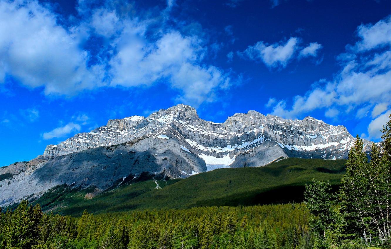 Фото обои лес, горы, Канада, Альберта, Banff National Park, Alberta, Canada, Банф, Cascade Mountain