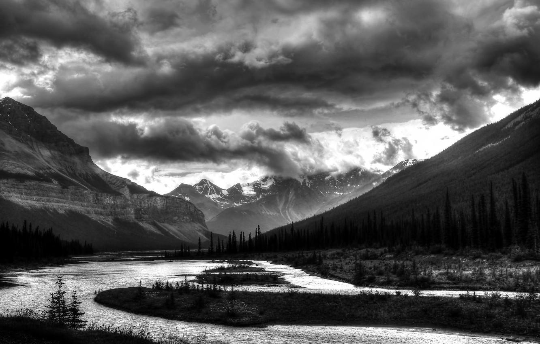 влияние красивые черно белые пейзажи картинки глубокое декольте, робби
