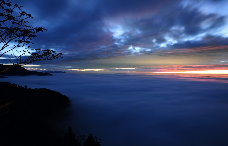 Фото обои небо, облака, деревья, закат, ветки, туман, Вечер, дымка
