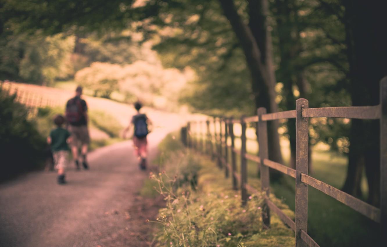 Фото обои дорога, листья, солнце, макро, деревья, природа, дети, фон, люди, дерево, widescreen, обои, настроения, листва, забор, …