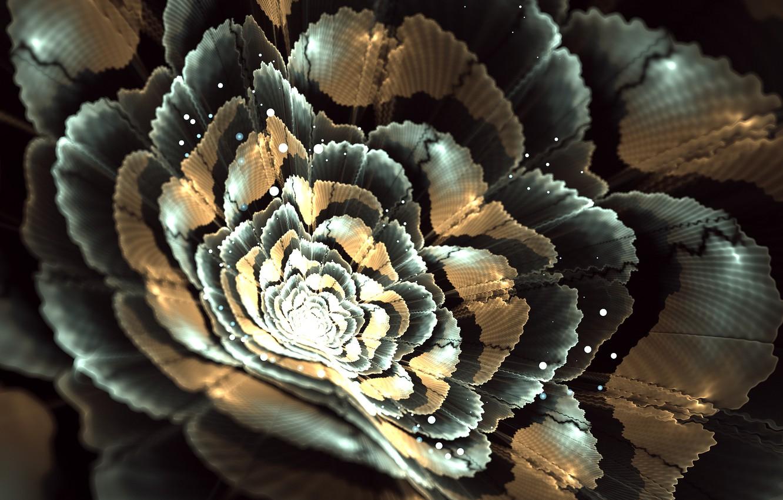 Фото обои цветок, свет, графика, пятна, фрактал, боке
