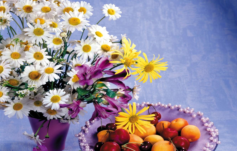 Фото цветы открытка ромашки