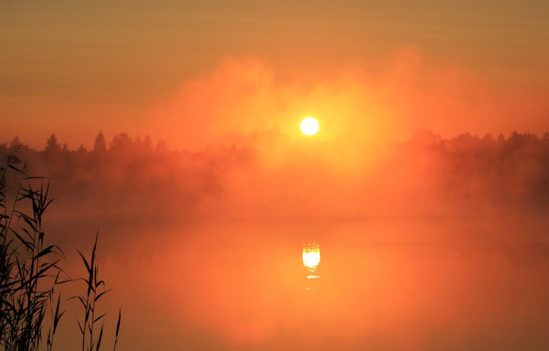 Фото обои туман, озеро, рассвет, Природа