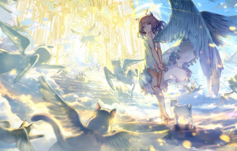 Фото обои животные, небо, кот, девушка, облака, свет, крылья, ангел, аниме, арт, лестница, храм, observerz