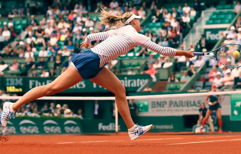 Обои ракетка, Мария шарапова, мяч. Спорт foto 6