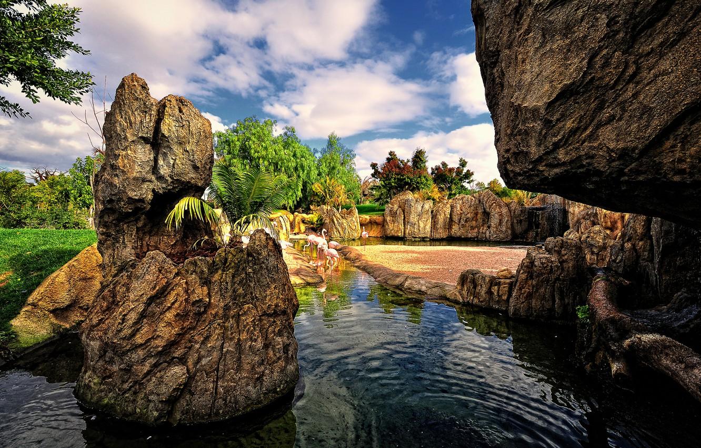 Фото обои небо, вода, облака, деревья, птицы, пруд, парк, камни, сад, испания, фламинго, valencia