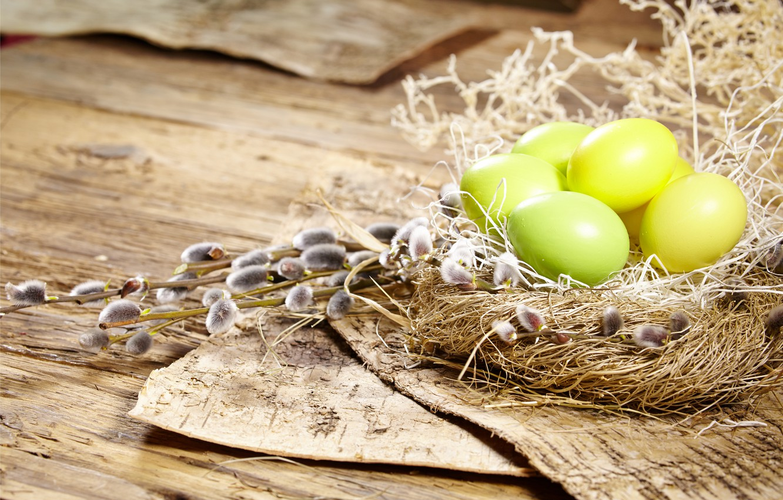 Фото обои яйца, Пасха, гнездо, верба, flowers, spring, Easter, eggs