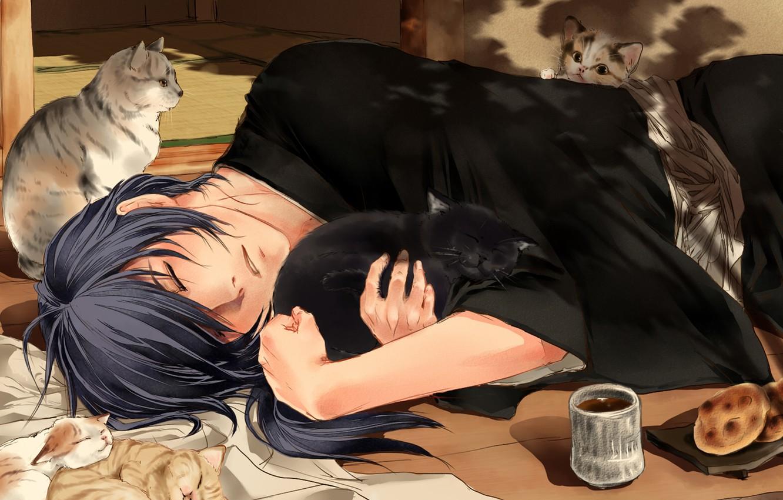Фото обои чай, коты, спит, парень, Hakuouki, Saitou Hajime, Shinsengumi