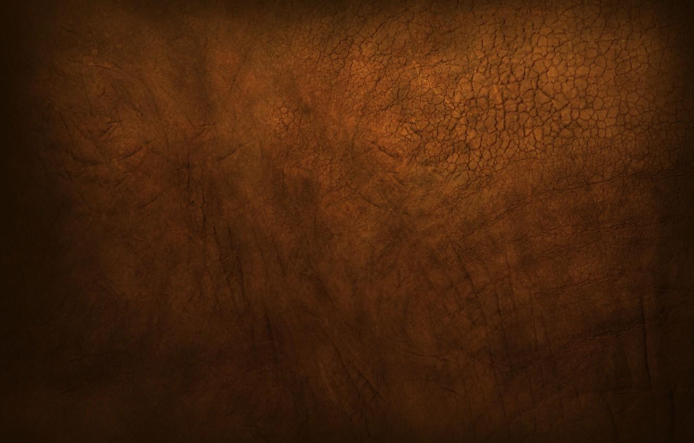 Фото обои brown, muddy, gutsy, Elephant skin, rough, dusty